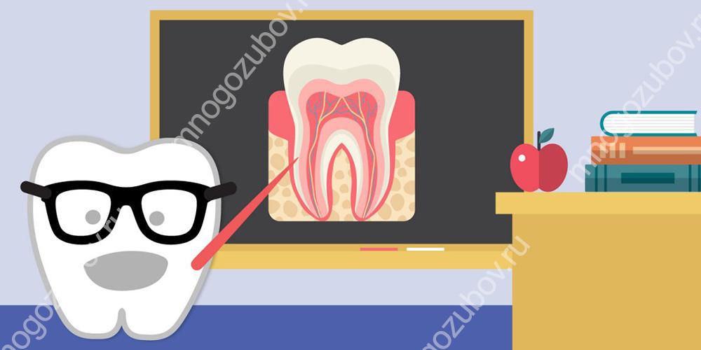 Распространенность и интенсивность кариеса зубов у детей и взрослых