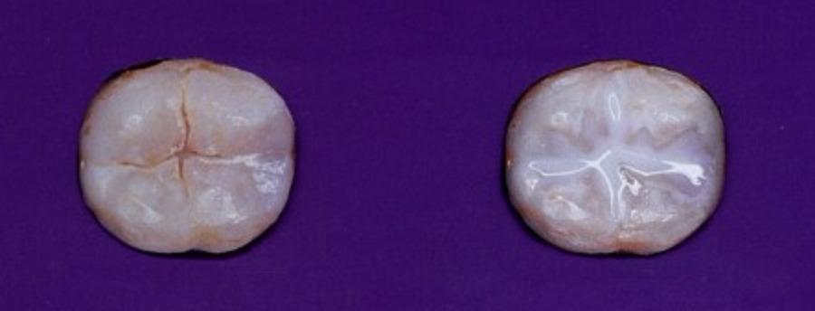 до и после герметизации