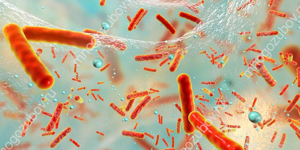 Влияние антибиотиков на микрофлору